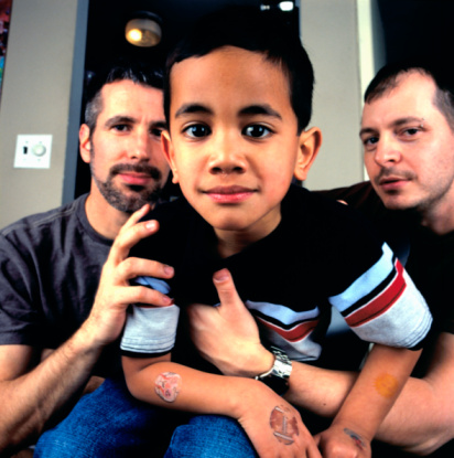 Gay adoption in 2010
