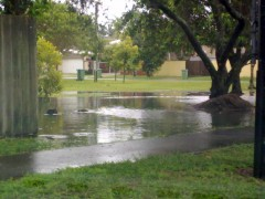 Local parks flooded after enormous amounts of rain. Source Caitlin Adams