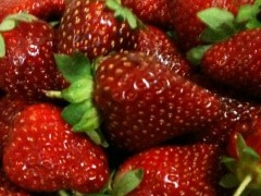 Delicious red strawberries won't be around this Summer season